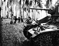 Australian infantry and armour at Buna (AWM 014008).jpg