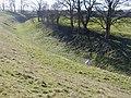 Avebury Henge - geograph.org.uk - 429625.jpg