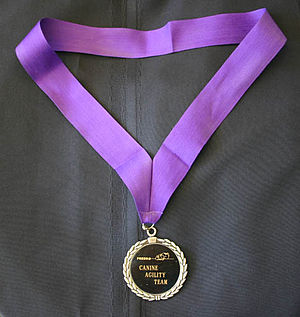 Gold medal - A medal on a ribbon designed to be worn around the winner's neck.