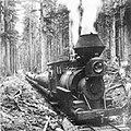 BV Jumbo hauling logs to Palmer. abt 1905.jpg