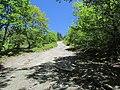 Bald Mountain Trail, Dedham, Maine image 1.jpg