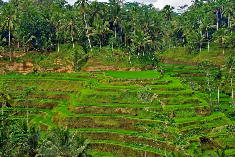 File:Bali, Indonesia.tiff