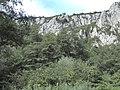 Banat, Nera Canyon - panoramio (68).jpg