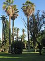 Barcelona Parc Ciutadella 5 (8252491524).jpg