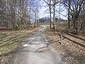 Barnbruch 04.04.2010 - panoramio - Christian-1983 (16).jpg