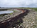 Bay of Houseby, Stronsay - geograph.org.uk - 212924.jpg