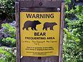 Bear Warning - Near Sperry Chalet.jpg