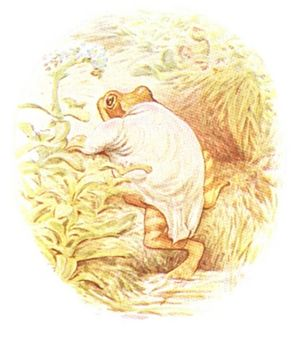 Beatrix Potter - A Tale of Jeremy Fisher - Illustration from page 48.jpg