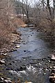 Beaver Run looking upstream.jpg