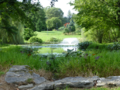 Bellarmine Pond.png