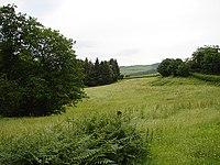 Beside Afon Gwydol - geograph.org.uk - 473602.jpg