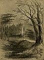 Bleak house (1895) (14585928219).jpg