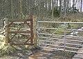 Blinkbonny Wood - geograph.org.uk - 712422.jpg