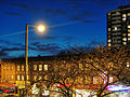 Bloor & Spadina - Toronto.jpg