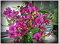 Blumengruß aus Eckweiler - panoramio.jpg