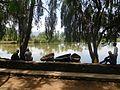 Boating at Bulbule lake 05.jpg