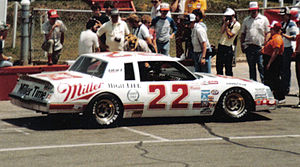 Bobby Allison - 1983 championship car