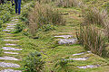 Bodmin Moor, Cornwall. Remains of the Liskeard and Caradon Railway-9111.jpg