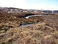 Bog, west of Burnt Hill - geograph.org.uk - 1773901.jpg