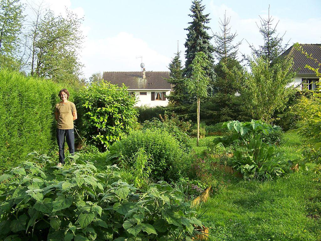 File boissets jardin wikimedia commons for Jardin yvelines