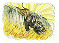 Book of Revelation Chapter 19-1 (Bible Illustrations by Sweet Media).jpg
