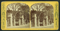 Boston Common, from Robert N. Dennis collection of stereoscopic views.png