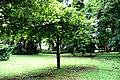 Botanic garden limbe36.jpg