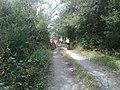 Brecha Hda de Guadalupe - Dr Gonzalez - panoramio.jpg