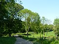 Bridleway, Gatton Park - geograph.org.uk - 1319848.jpg