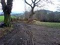 Bridleway Junction - geograph.org.uk - 657587.jpg