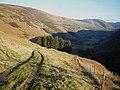 Bridleway above the Nant Llwyn-gwern - geograph.org.uk - 1173022.jpg