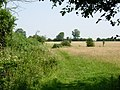 Bridleway near Dunton Bassett - geograph.org.uk - 194842.jpg