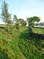 Bridleway near Fox Stones, Barkisland - geograph.org.uk - 801800.jpg