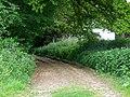 Bridleway near West Tisted - geograph.org.uk - 1331401.jpg