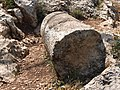 Broken shaft of column along Ancient Roman Road.jpg