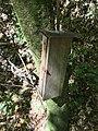 Brook Waimārama MRD 22.jpg