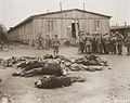 Buchenwald Ohrdruf Corpses 77443.jpg
