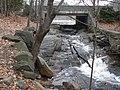 Bullough's Pond P1160254.jpg
