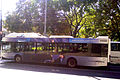 Burgasbus TEDOM C12G.jpg