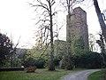 Burgruine Liebeneck, 1263 erste urkundliche Erwähnung, 1692 Zerstörung durch französ. General Chamilly. Wierderaufbau um 1770. - panoramio.jpg