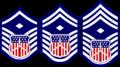 CAP Cadet 1st Sgt.png