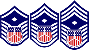 Cadet grades and insignia of the Civil Air Patrol - Image: CAP Cadet 1st Sgt