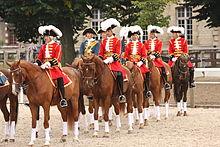 Photo de cavaliers habillés de rouge et or avec un chapeau noir à grande plume blanche, sur des chevaux à robe brune