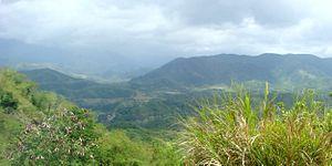 Pantabangan–Carranglan Watershed Forest Reserve - View of the forest reserve from the Pantabangan–Baler Road in Cadaclan, Pantabangan