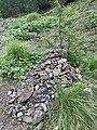 Cairn, parcours des fées (Crévoux) en juillet 2020, 2.jpg