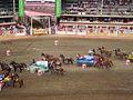 Calgary Stampede 2.jpg