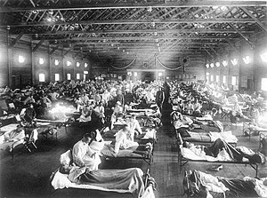 1918 flu pandemic - Soldiers from Fort Riley, Kansas, ill with Spanish influenza at a hospital ward at Camp Funston.