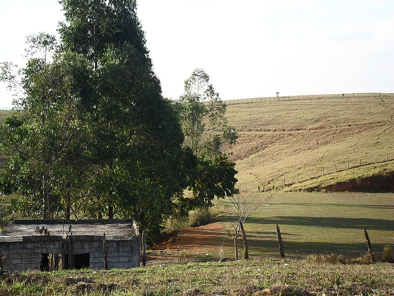 File:Campo do Juventude do Barreiro lateral left - panoramio.jpg