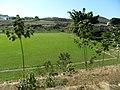 Campo do Piedade de Cima VRB. - panoramio.jpg