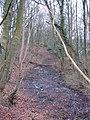 Caprington grounds - geograph.org.uk - 338468.jpg